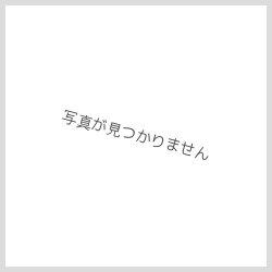 画像4: 別注の見本 1槽シンク(業務用1槽流し台)
